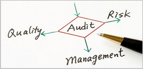 MCB_Controlling Audit