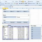 Napredne Pivot tabele 6