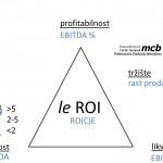 MCB_Analiza finansijskih izveštaja (6)